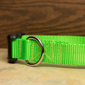 Lime Green Dog Collar
