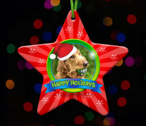 Star - Pet Photo Ornament