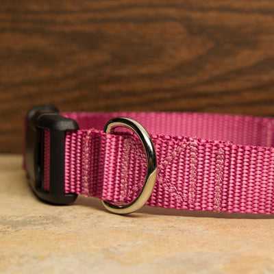 Rose Pink Dog Collar