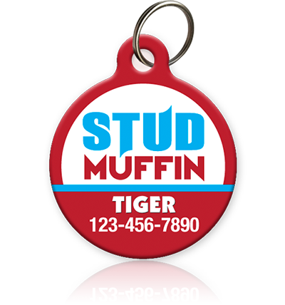 stud muffin pet id tag for cat or dog
