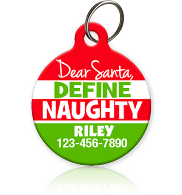 Define Naughty - Pet ID Tag
