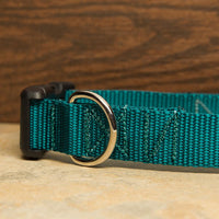 Teal Dog Collar