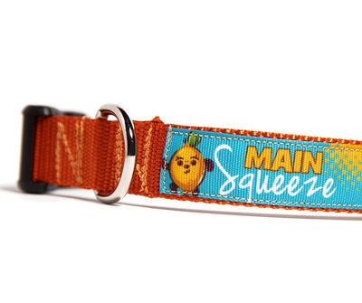 MAIN SQUEEZE Dog Collar
