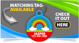 rainbow-pet-id-tag