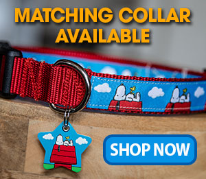 snoopy woodstock dog collar