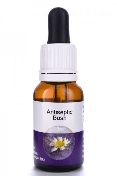 Living Essences Antiseptic Bush 100ml