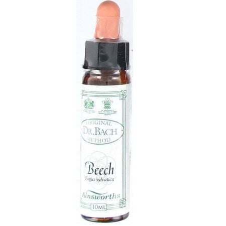 Bach Original Flower Beech 10ml | BACH ORIGINAL FLOWER