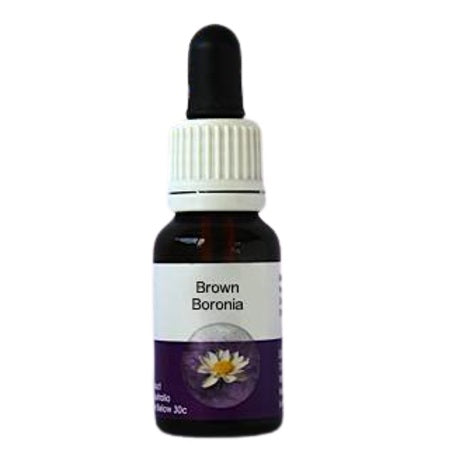 Living Essences Brown Boronia 100ml
