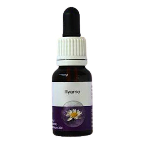 Living Essences Illyarrie 100ml