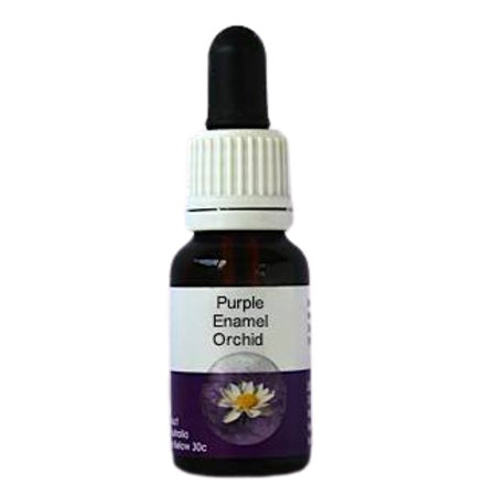 Living Essences Purple Enamel 50ml