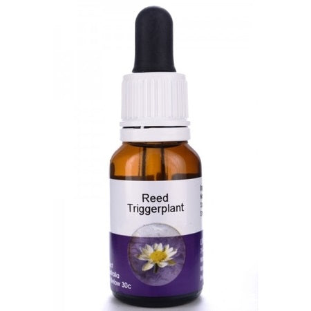 Living Essences Reed Trigger 15ml
