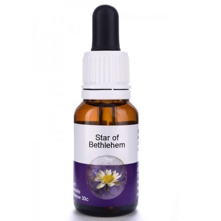 Living Essences Star Of Bethlehem 50ml