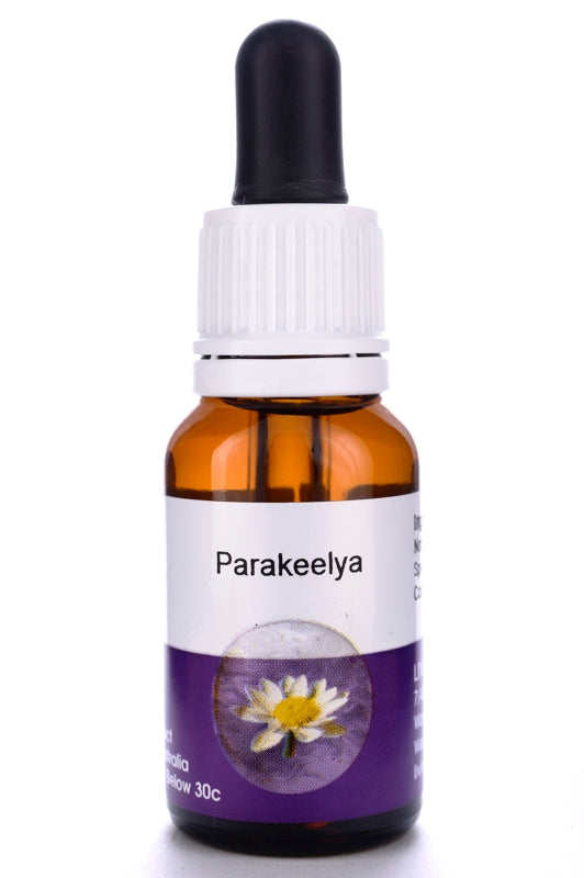 Living Essences Parakeelya 15ml
