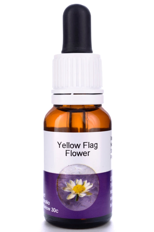 Living Essences Yellow Flag 15ml