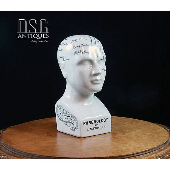 6 Porcelain Phrenology Head-Phrenology Bust