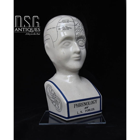 Phrenology Head Bust 16 Inch L.n. Fowler Porcelain Ceramic Crackle Grazed Statues Steampunk
