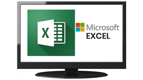 excel professional plus