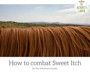 How to naturally combat Sweet Itch