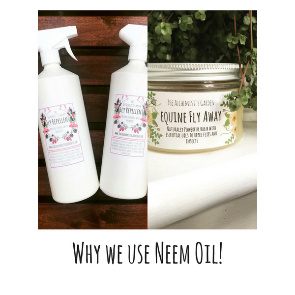 Why do we use Neem Oil?