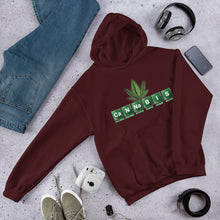 CaNNaBIS Hooded Sweatshirt - TeeHop