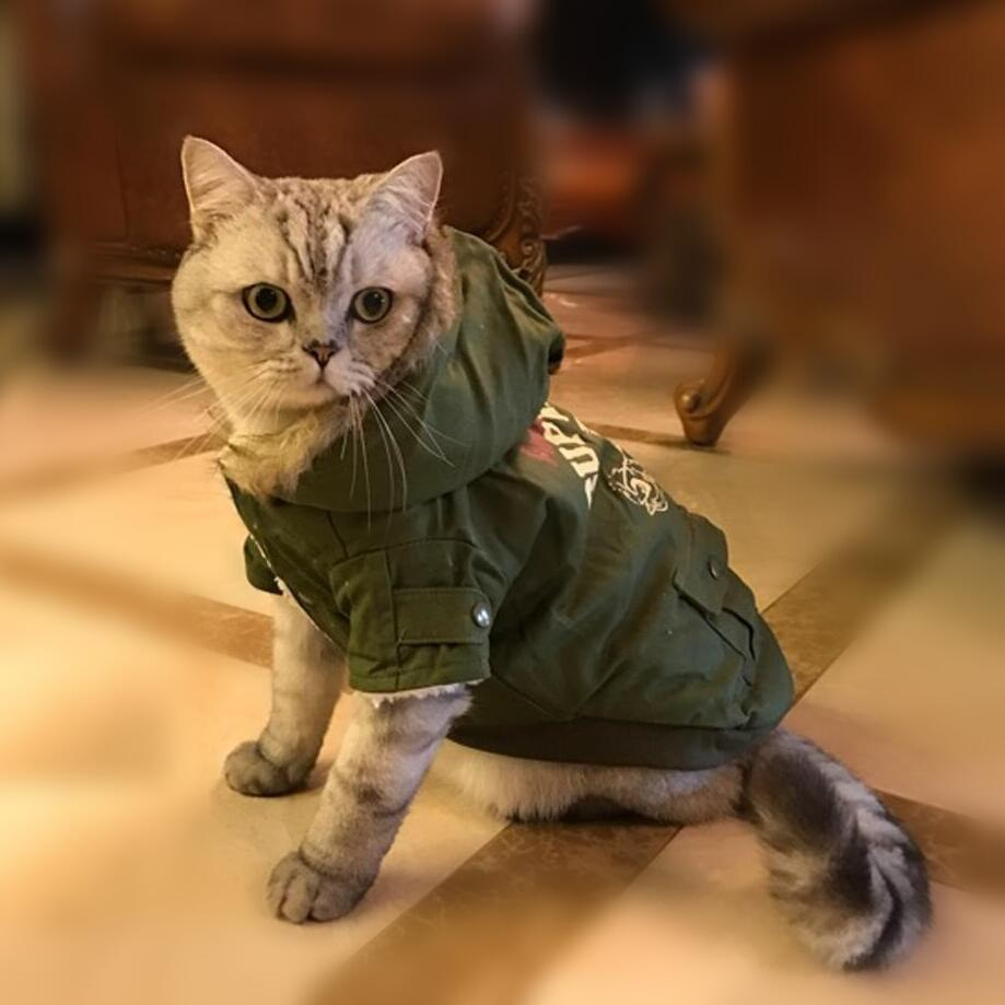 NEW Camo Warm Winter Cat Coat Jacket