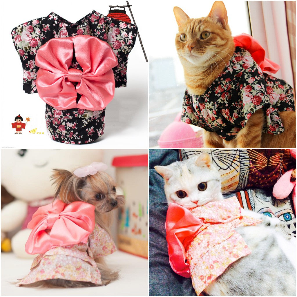 Japan Style  Cat  flower