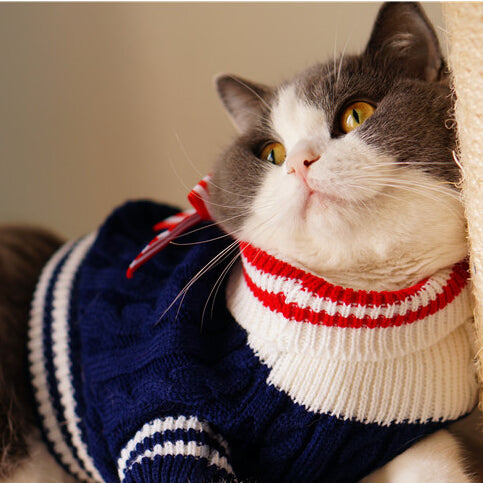 Warm Winter Autumn Navy Style Pet Cat