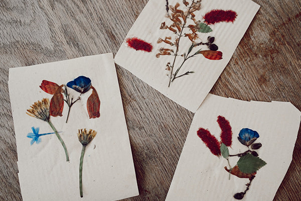 DIY | Homemade Pressed Flower Greeting Cards