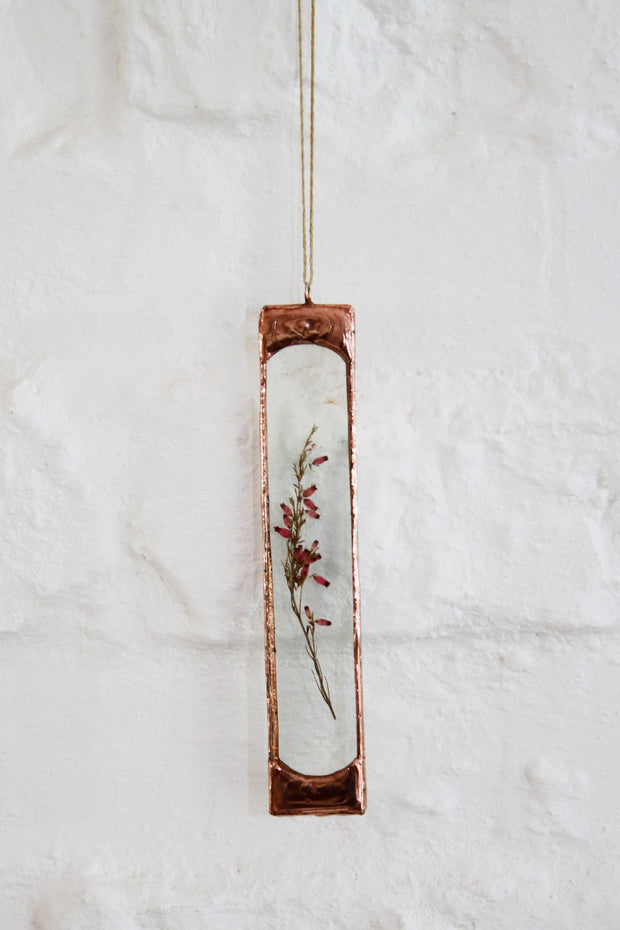 Pressed Fynbos - Pink Erica Wall Decor