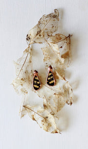 Pressed Butterfly Wing Paired Earring Set