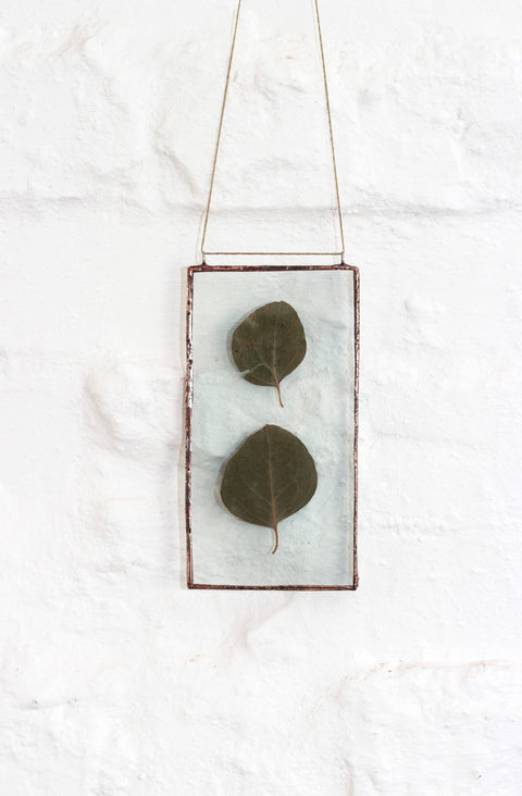 Pressed Eucalyptus Wall Decor
