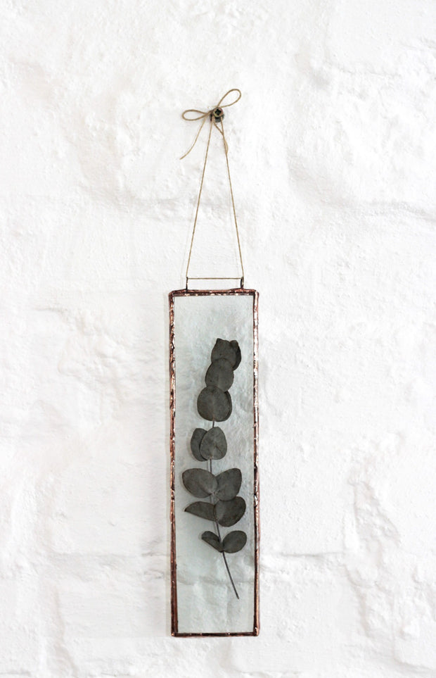 Pressed Eucalyptus Penny Gum Wall Decor