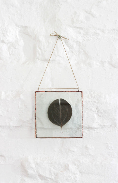 Pressed Eucalyptus Wall Decor with Hemp String