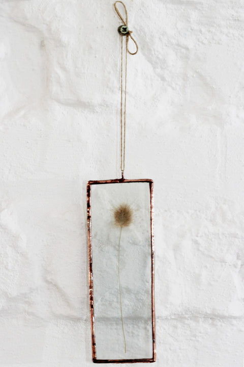 Pressed Fynbos - Grass Flower Wall Decor