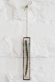 Pressed Fynbos - White Erica Wall Decor
