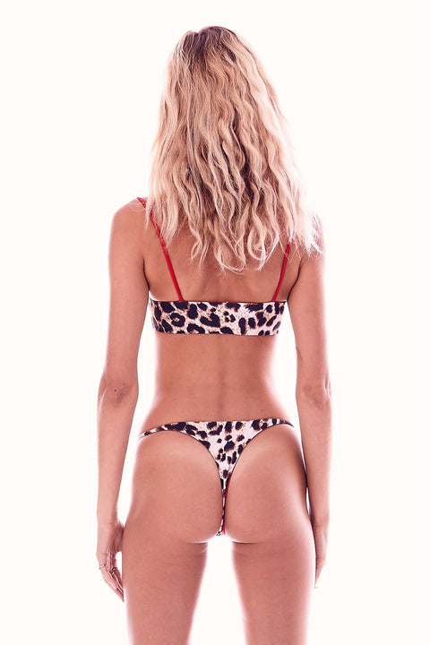 Reversible Fearless Bottoms Wild Leopard/African Poppy