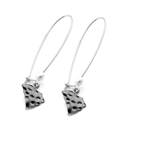 South Carolina State earring - silver