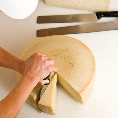 Professional shovel knife 'Asiago Dop'