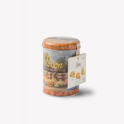 Lemon Apricot Pea - Thin Box Collection