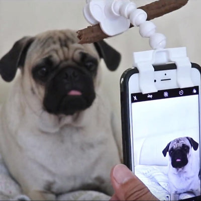 Pet Selfie Stick/Clip