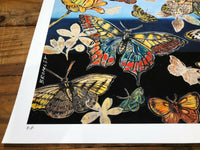 "DAVID BROMLEY ""Butterflies I"" Printers Proof Print PP 28cm x 35cm"