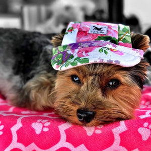 Adorable Dog Hat (Protect your dogs eyes from sun the sun)