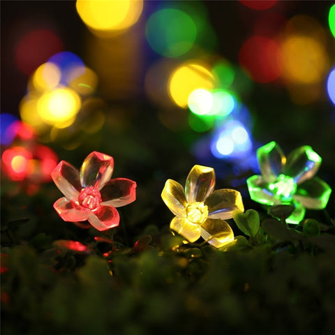 Image of Flower Power Solar Lights