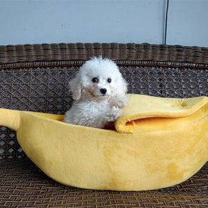 Pet Banana House