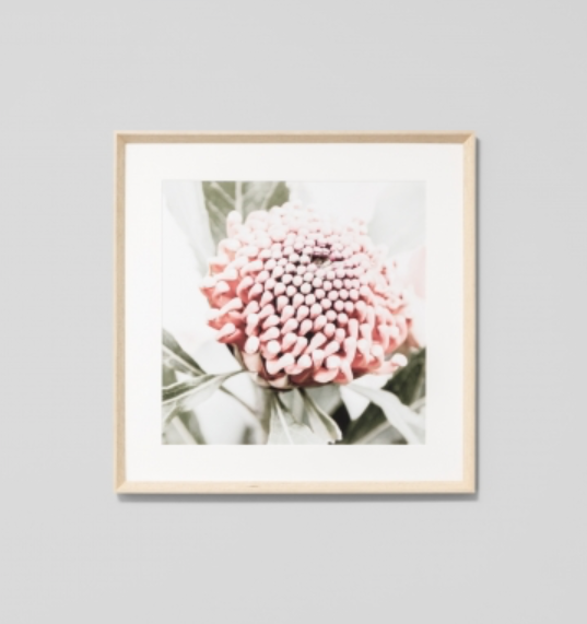 Middle of Nowhere - Native Floral 2 Framed Print
