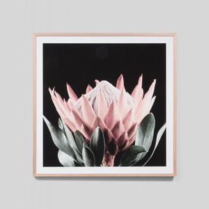 Middle of Nowhere - Native Bloom Framed Print