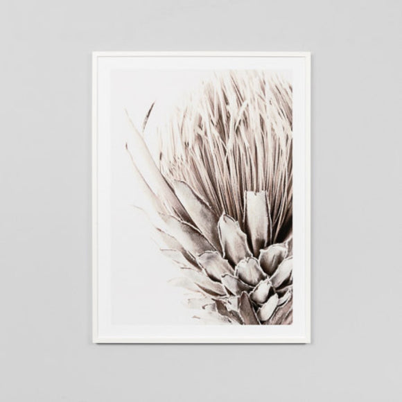 Middle of Nowhere - Golden Protea Framed Print