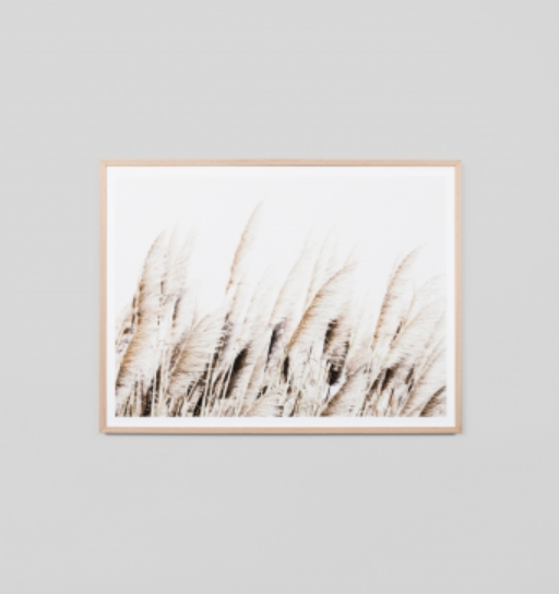 Middle Of Nowhere - Pampas Breeze Framed Print