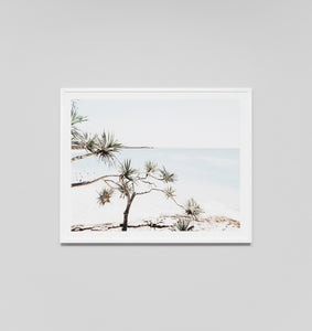 Middle of Nowhere - Northern Beach Framed Print