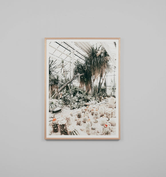 Middle of Nowhere - Desert Glasshouse Framed Print